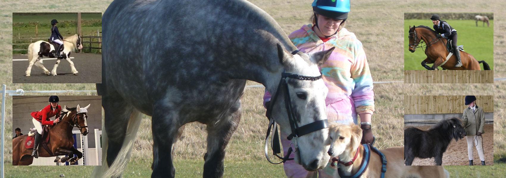 Penistone & District Riding Club Montage